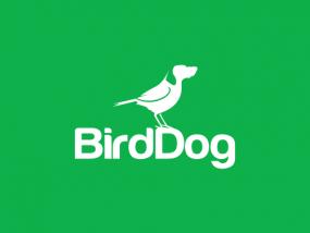 Birddog Logo on Green