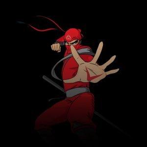 Ninja Series