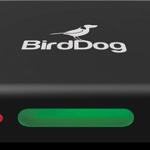 BirdDog Mini